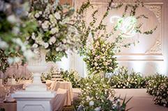 【初春】小清新的森系婚礼